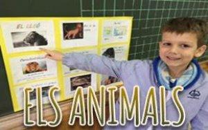 Projecte Els Animals